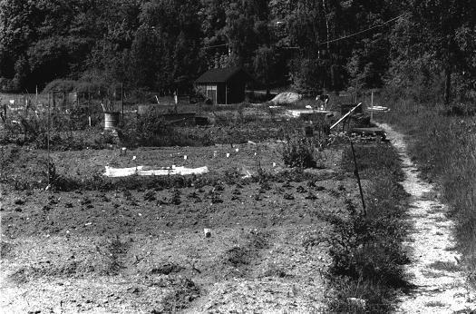 Koloniområdet från 1987